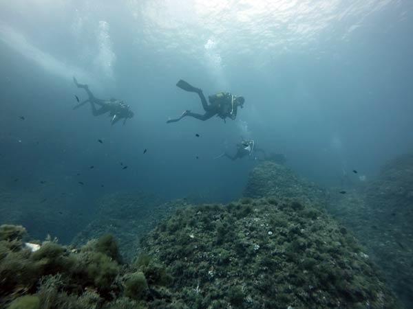 Reserva Marina Cabo San Antonio - Denia Jávea